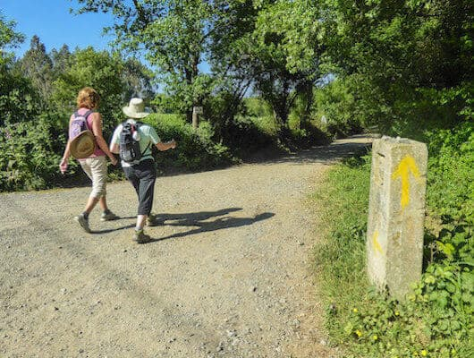 Camino frances on the camino de santiago routes